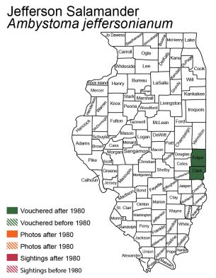 Illinois map of Jefferson salamander distribution