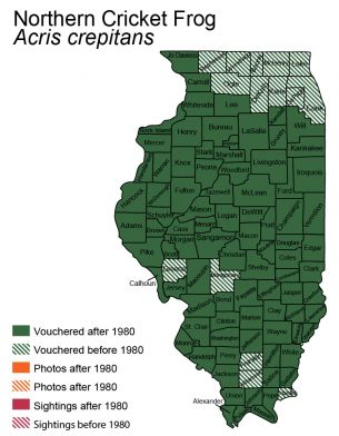 map of distribution of blanchards cricket frog in Illinois