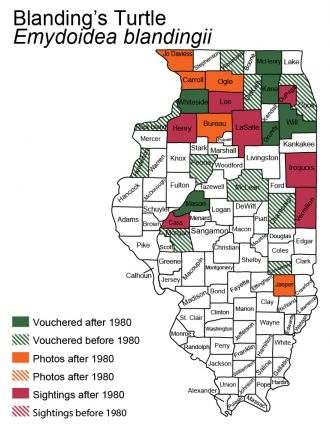 Illinois map of Blandings turtle distribution