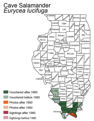 map of cave salamander distribution in Illinois