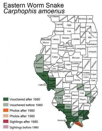 Illinois map of common wormsnake distribution