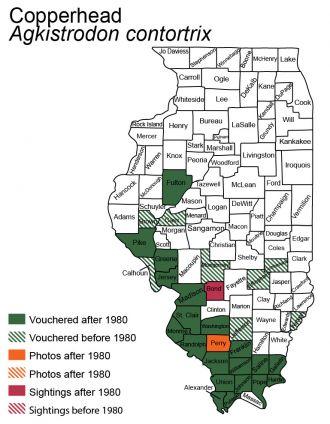Illinois map of copperhead distribution