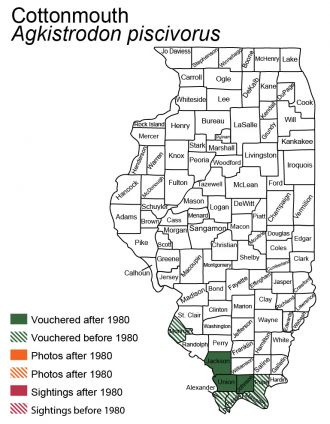 Illinois map of cottonmouth distribution