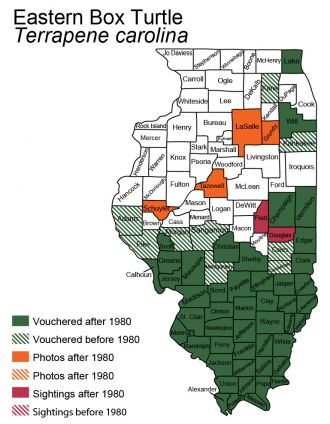 Illinois map of Eastern Box Turtle distribution