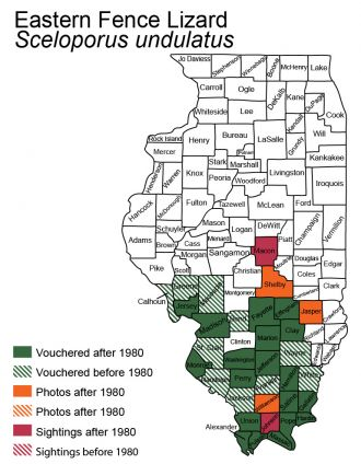 map of eastern fence lizard distribution in Illinois