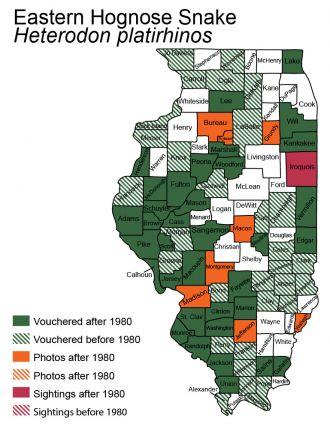 Illinois distribution of eastern hog-nosed snake