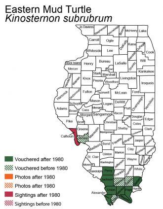 Illinois distribution of eastern mud turtle
