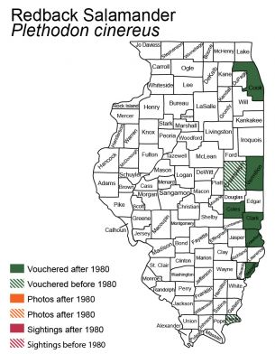 distribution map of redbacked salamander in Illinois