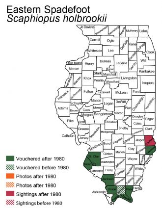 Illinois distribution map for eastern spadefoot