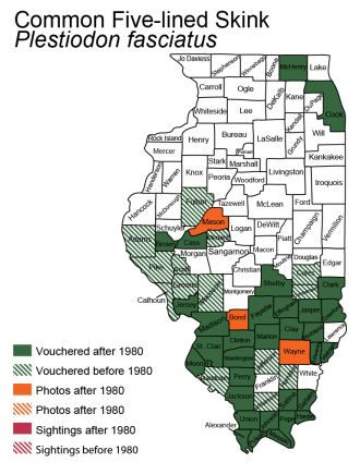 common five-lined skink Illinois distribution map