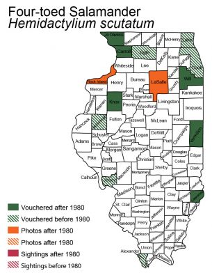 map of Illinois distribution of four-toed salamander