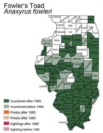 map of Fowlers toad distribution in Illinois