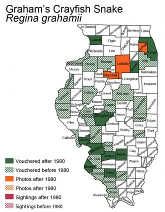 Illinois distribution of graham's crayfish snake