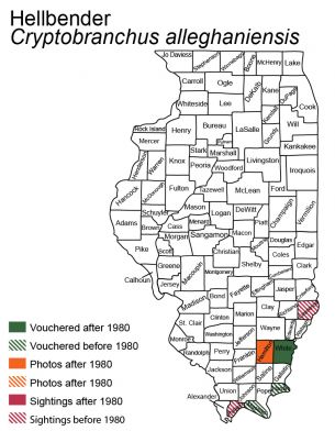 map of hellbender distribution in Illinois