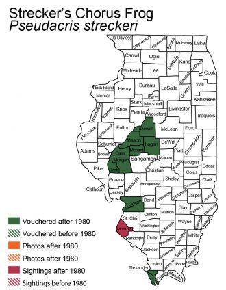 map of Illinois Chorus Frog distribution