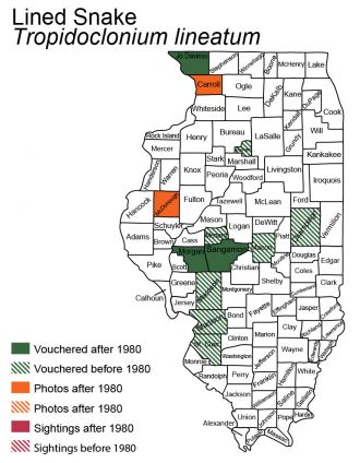 lined snake Illinois distribution map