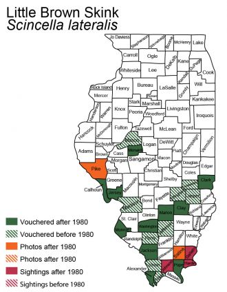 map of Illinois distribution of little brown skink
