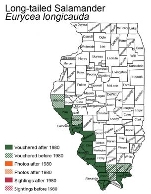map of long-tailed salamander distribution in Illinois
