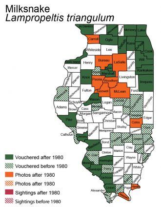 Illinois distribution of milksnake