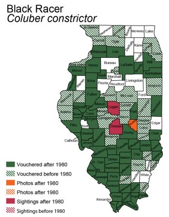 map of black racer distribution in Illinois