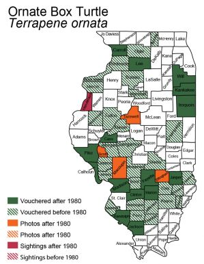 Illinois map of ornate box turtle distribution
