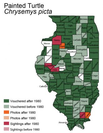 Illinois distribution map for painted turtle
