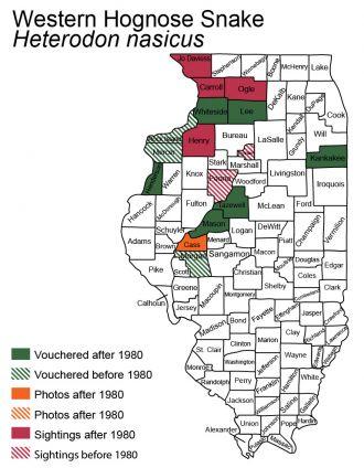 Illinois distribution of plains hog-nosed snake