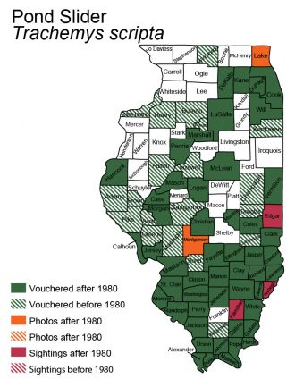 Illinois distribution map for pond slider turtle species