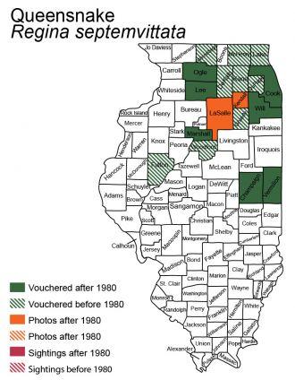 queensnake Illinois distribution