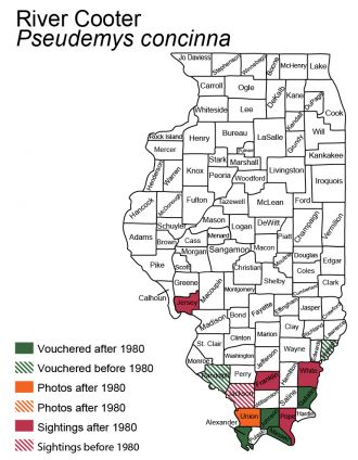 Illinois map of River Cooter distribution