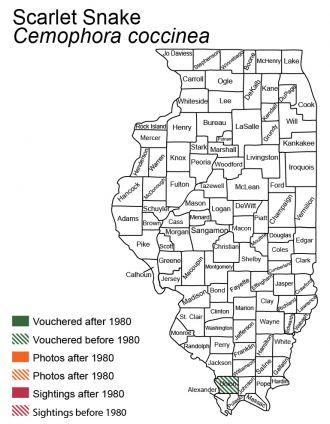 map of Illinois distribution of scarletsnake