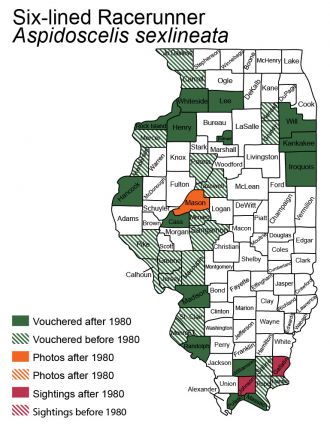 map of six-lined racerunner distribution in Illinois