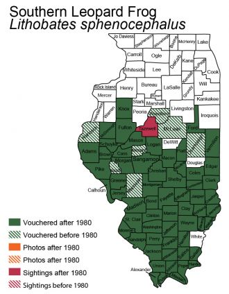 Illinois distribution map of southern leopard frog