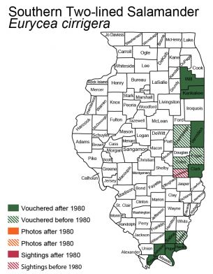 map of Southern Two-Lined Salamander distribution in Illinois