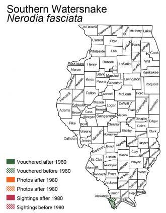 Illinois distribution of southern watersnake