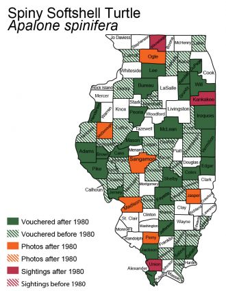 Illinois distribution of spiny softshell turtle