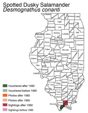 map of spotted dusky salamander distribution in Illinois